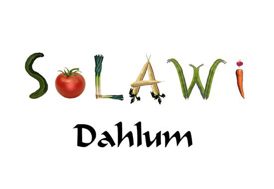 di-solawi-dahlum